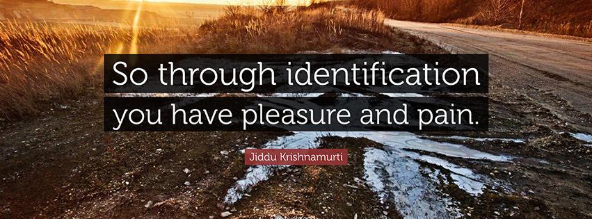 pleasure-identification
